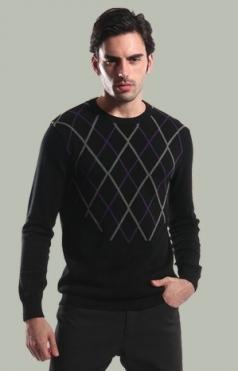 Pánský svetr 221456